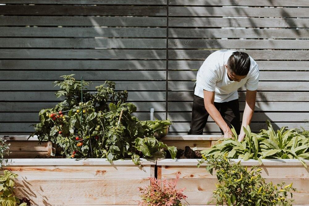 mand og plantekasser til terrassen